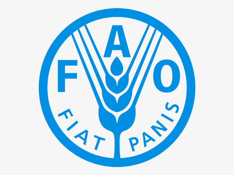 El trigo y la carne hacen subir el índice de precios de los alimentos de la FAO
