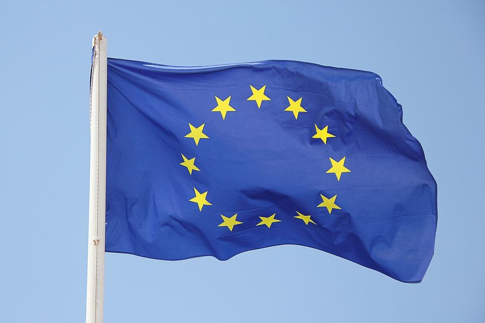 Europa se une frente a la amenaza de la peste porcina africana