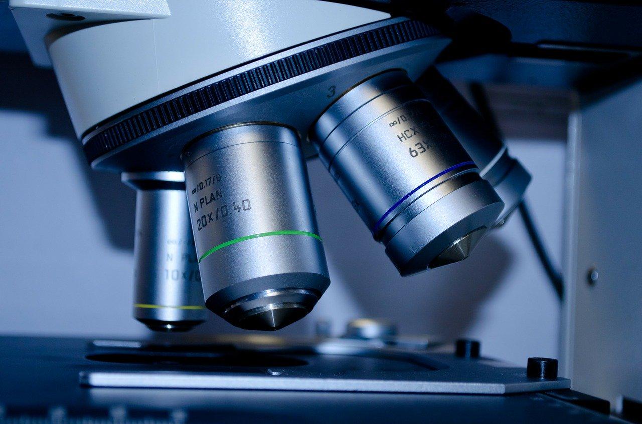 Veterinarios de la UE solicitan inmunocastración para los porcinos ecológicos